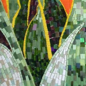 Snake Plant mosaic.
